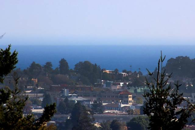 615 Graham Hill Rd, Santa Cruz, CA 95060 (#ML81863215) :: Strock Real Estate
