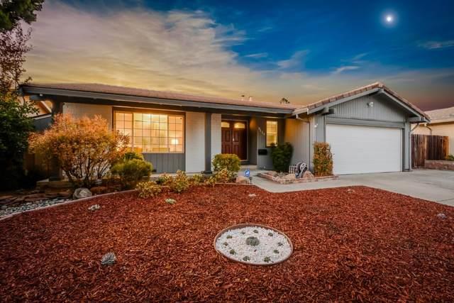 3519 Rowley Dr, San Jose, CA 95132 (#ML81863676) :: Intero Real Estate