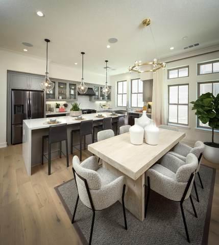 2356 Toledo Ter, Mountain View, CA 94043 (#ML81863887) :: The Goss Real Estate Group, Keller Williams Bay Area Estates