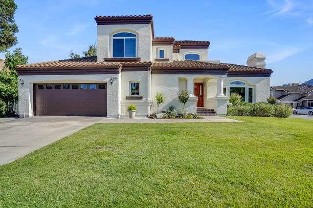 384 Via Loma, Morgan Hill, CA 95037 (#ML81864060) :: The Realty Society
