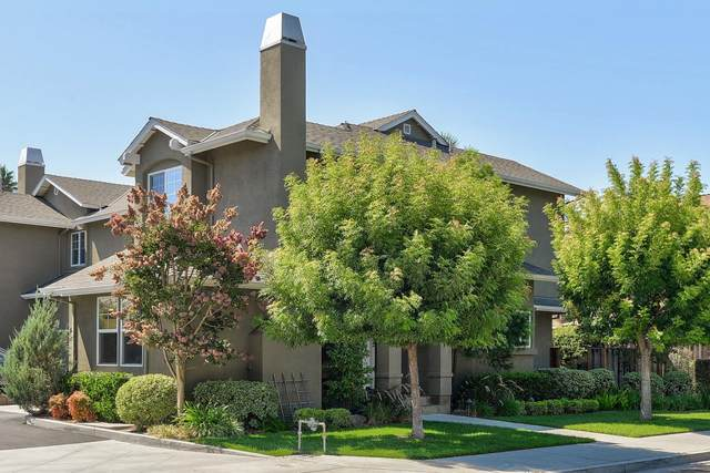 206 Shelley Ave, Campbell, CA 95008 (#ML81864275) :: Paymon Real Estate Group
