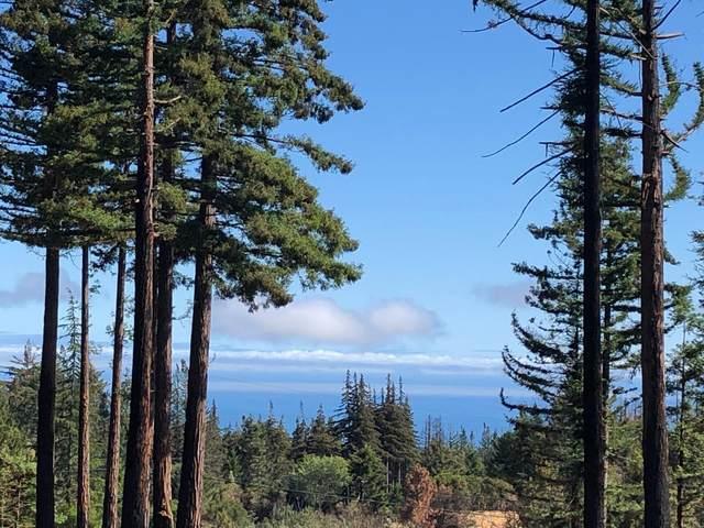 77 Pine Hill Dr, Santa Cruz, CA 95060 (#ML81864442) :: The Sean Cooper Real Estate Group