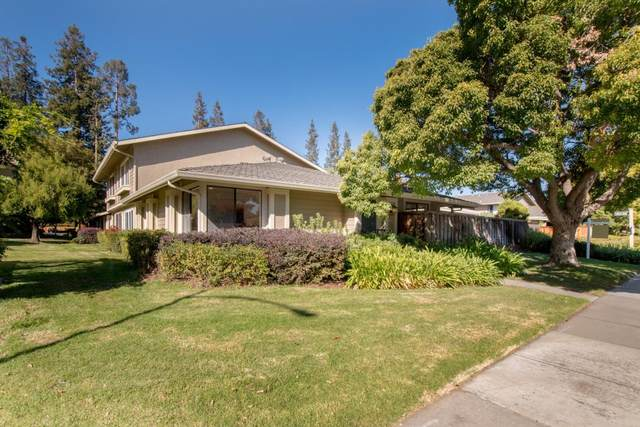 1183 Green Glen Dr, San Jose, CA 95126 (#ML81864584) :: Real Estate Experts