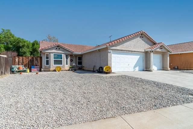 13716 Anacapa Ave, Gustine, CA 95322 (#ML81864642) :: The Kulda Real Estate Group