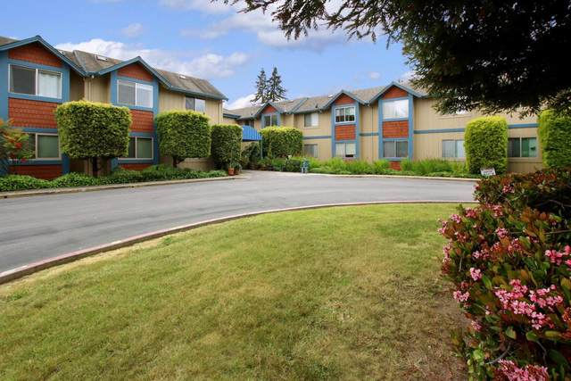 209 Vista Prieta Ct 209, Santa Cruz, CA 95062 (#ML81864829) :: The Sean Cooper Real Estate Group