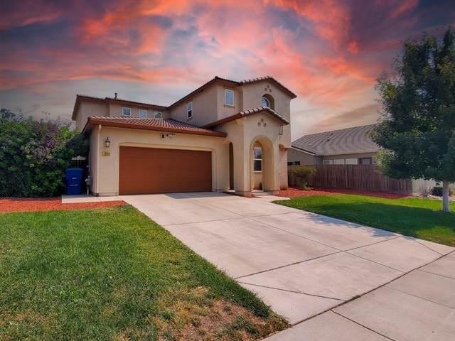1654 Sand Ln, Manteca, CA 95337 (#ML81865003) :: The Sean Cooper Real Estate Group