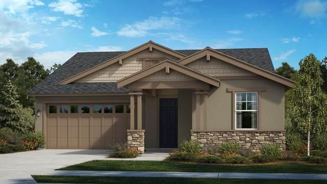 428 Walcott St, Manteca, CA 95336 (#ML81865703) :: The Sean Cooper Real Estate Group