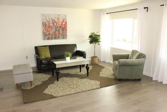 109 Santa Teresa 109, San Leandro, CA 94579 (#ML81865894) :: The Kulda Real Estate Group