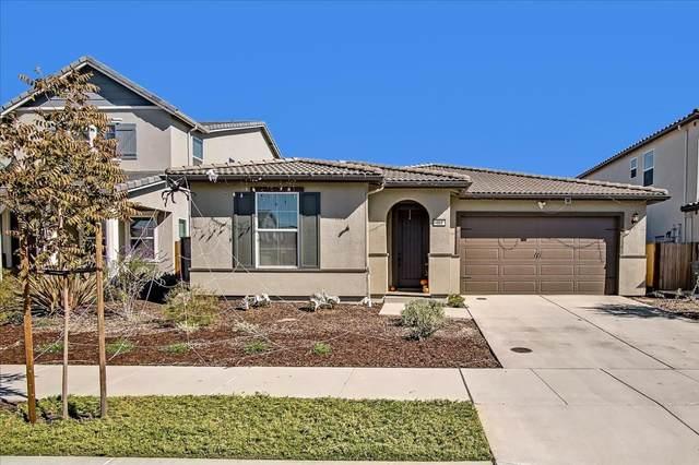 481 Toledo Dr, Hollister, CA 95023 (#ML81866404) :: The Kulda Real Estate Group