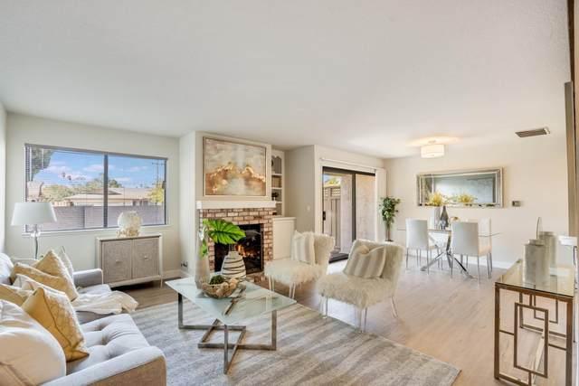 2062 Holly Branch Ct, Santa Clara, CA 95050 (#ML81866550) :: Intero Real Estate