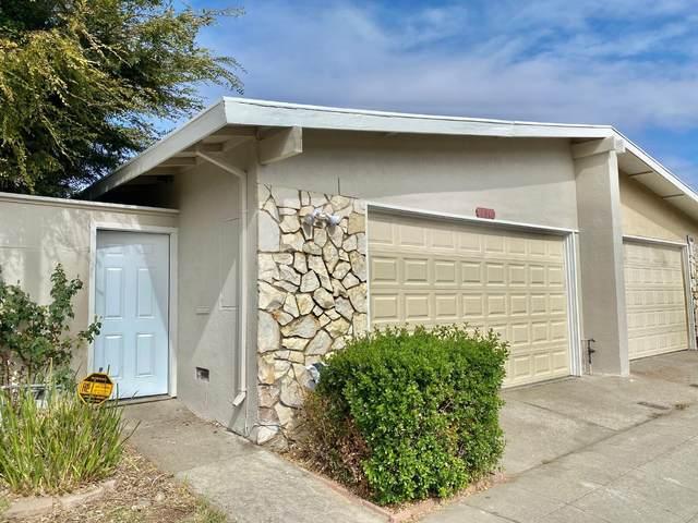 161 Lonetree Ct, Milpitas, CA 95035 (#ML81866809) :: The Sean Cooper Real Estate Group