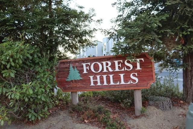103 White Pine Dr, Vallejo, CA 94591 (#ML81866871) :: The Kulda Real Estate Group