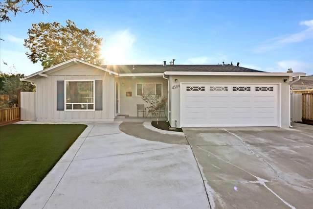 4589 Crockett Ct, Fremont, CA 94538 (#ML81866879) :: Paymon Real Estate Group