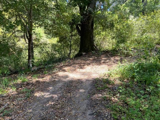 0 Farr Avenue, Aptos, CA 95003 (#ML81867237) :: Live Play Silicon Valley