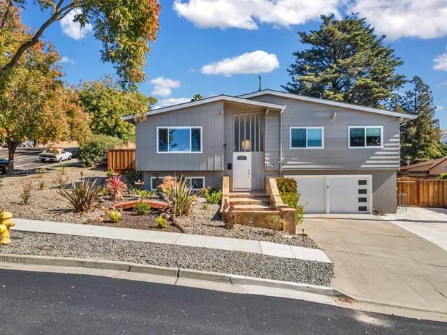 1146 Colonial Ln, San Jose, CA 95132 (#ML81867302) :: Strock Real Estate