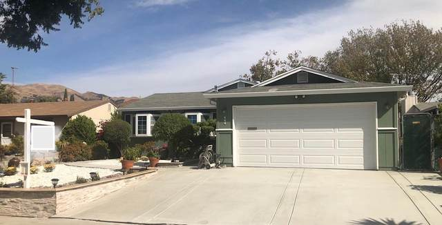 464 Cestaric Dr, Milpitas, CA 95035 (#ML81867371) :: The Sean Cooper Real Estate Group