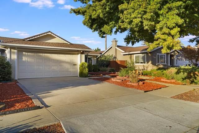 447 Curie Dr, San Jose, CA 95123 (#ML81867518) :: Intero Real Estate