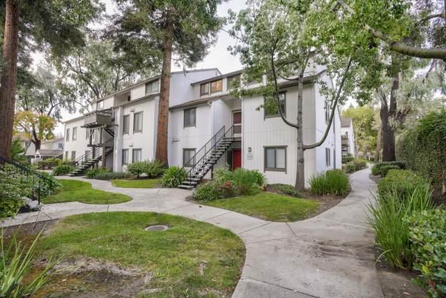 Address Not Disclosed, San Jose, CA 95132 (#ML81867554) :: Intero Real Estate