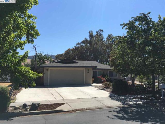 38100 3rd Street, Fremont, CA 94536 (#BE40790674) :: von Kaenel Real Estate Group