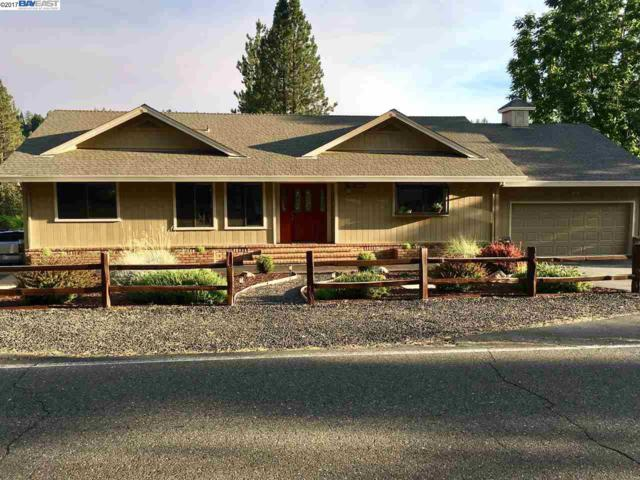 26298 Fairway Dr, Pioneer, CA 95666 (#BE40797993) :: The Kulda Real Estate Group