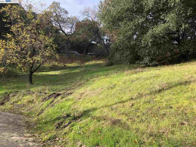 1490 Pleasant Hill Rd, Lafayette, CA 94549 (#BE40806077) :: The Kulda Real Estate Group