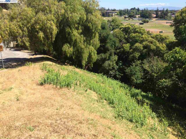 32153 Bernice Way, Hayward, CA 94544 (#BE40807121) :: Strock Real Estate