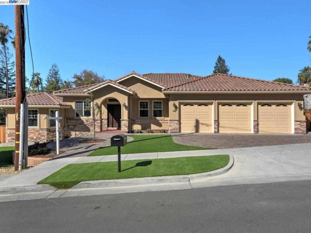 106 Telles Ln, Fremont, CA 94539 (#BE40807148) :: The Goss Real Estate Group, Keller Williams Bay Area Estates