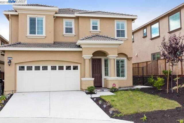 9778 Sara Ann Ct, Dublin, CA 94568 (#BE40808087) :: The Kulda Real Estate Group