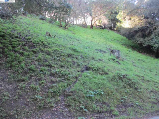7215 Homewood Drive, Oakland, CA 94603 (#BE40808939) :: The Kulda Real Estate Group