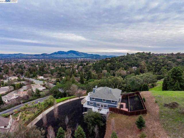 1015 Silverhill Dr, Lafayette, CA 94549 (#BE40809149) :: The Kulda Real Estate Group