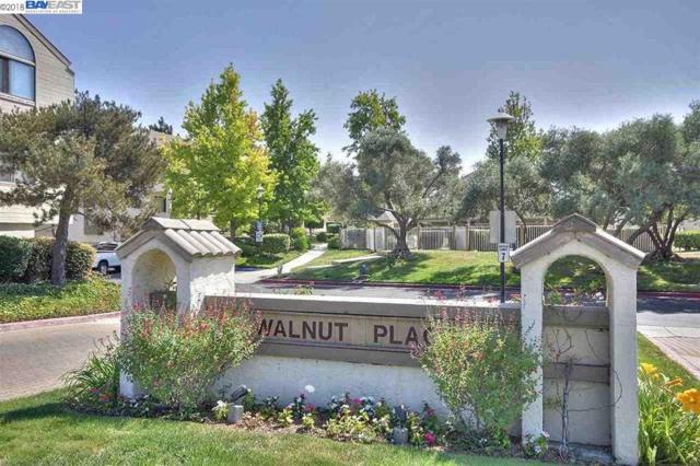 39171 Walnut Ter, Fremont, CA 94536 (#BE40809399) :: The Kulda Real Estate Group