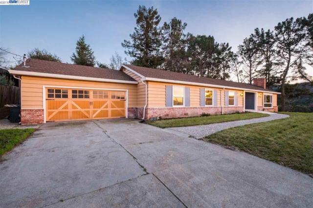 73 Pine Hill Dr, El Sobrante, CA 94803 (#BE40809541) :: The Dale Warfel Real Estate Network