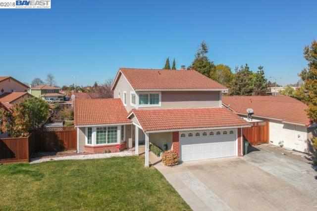 4845 Rocklin Dr, Union City, CA 94587 (#BE40811001) :: Astute Realty Inc