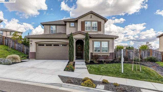 5275 Montiano Ct, Dublin, CA 94568 (#BE40811281) :: The Kulda Real Estate Group