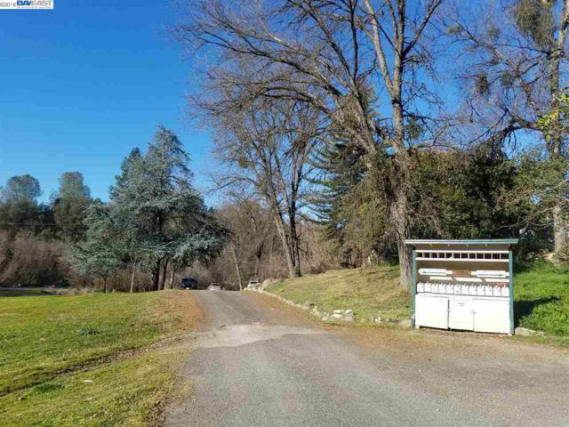 19102 Barron Ranch Rd, Sonora, CA 95370 (#BE40813629) :: The Dale Warfel Real Estate Network