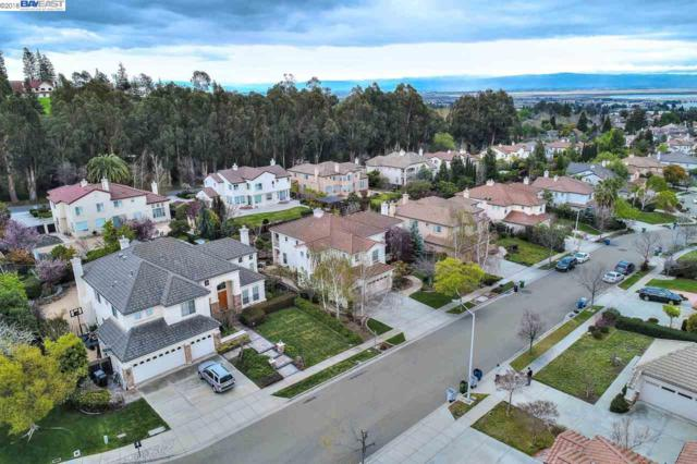 731 Bodega Ct, Fremont, CA 94539 (#BE40813779) :: von Kaenel Real Estate Group