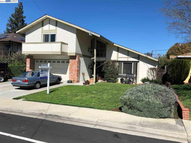 868 Madigan Ave, Concord, CA 94518 (#BE40815113) :: Strock Real Estate