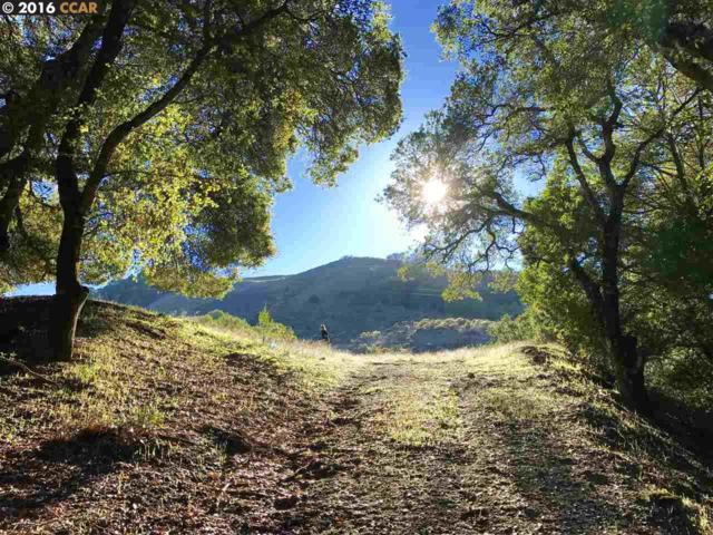 Bollinger Canyon Road, Moraga, CA 94556 (#CC40763921) :: Strock Real Estate