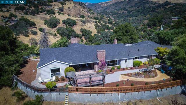 11321 Canon Vista Ave, San Jose, CA 95127 (#CC40807756) :: Astute Realty Inc