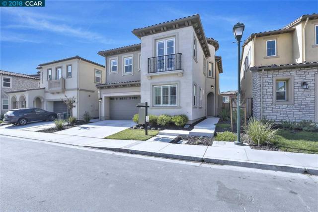 6057 Alpine Blue Dr, San Ramon, CA 94582 (#CC40808573) :: Astute Realty Inc