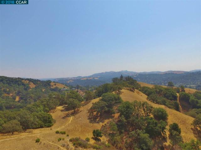 0 Monticello Rd, Lafayette, CA 94549 (#CC40810132) :: The Kulda Real Estate Group