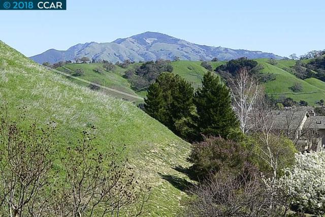 1550 Stanley Dollar Dr, Walnut Creek, CA 94595 (#CC40810438) :: Astute Realty Inc