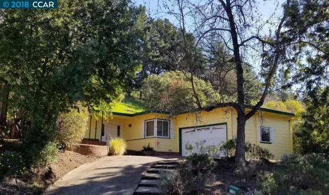 1028 Carol Ln, Lafayette, CA 94549 (#CC40810819) :: The Kulda Real Estate Group