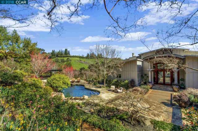 119 Melody Ln, Orinda, CA 94563 (#CC40810903) :: The Kulda Real Estate Group