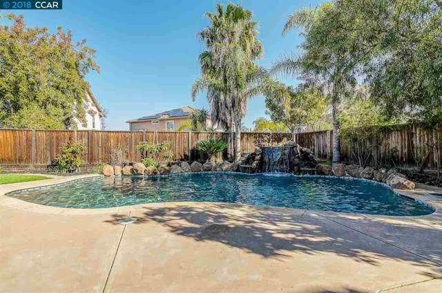 22 Diane Ct, Oakley, CA 94561 (#CC40813138) :: The Dale Warfel Real Estate Network