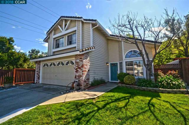 1068 Green Point Ct, Concord, CA 94521 (#CC40813747) :: The Kulda Real Estate Group