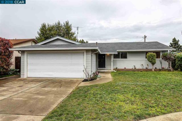 5039 Brett Ct, Fremont, CA 94538 (#CC40814040) :: The Dale Warfel Real Estate Network