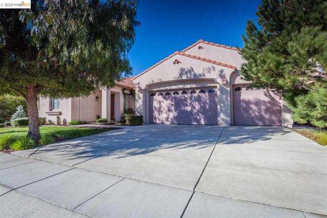 714 Solitude Dr, Oakley, CA 94561 (#EB40810977) :: The Kulda Real Estate Group
