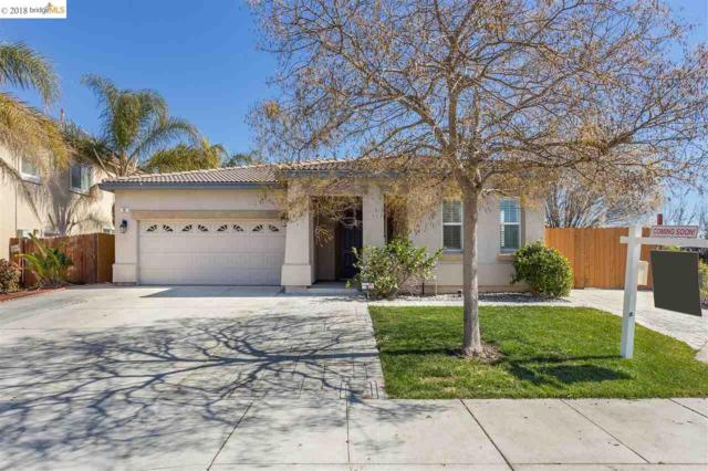 10 Vitruvius Ct, Oakley, CA 94561 (#EB40812452) :: The Dale Warfel Real Estate Network