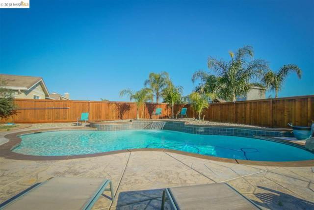 388 Havasu Ct, Brentwood, CA 94513 (#EB40813841) :: von Kaenel Real Estate Group